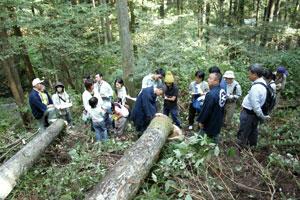 全国一斉「森林見学・体験ツアー」